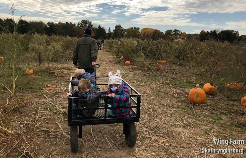 Kids at pumpkin patch at Wing Farms