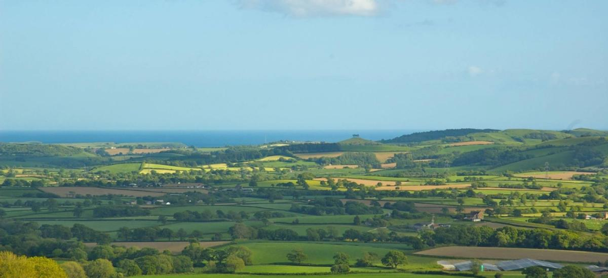 View over the Dorset countryside from Pilsdon Pen, Dorset
