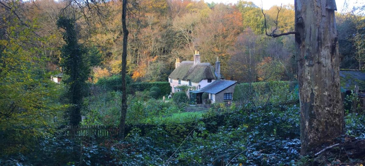 Autumn at National Trust's Hardy's Cottage near Dorchester, Dorset
