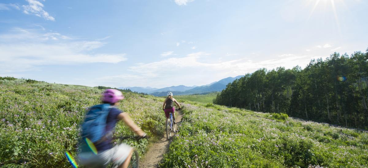Two women mountain biking on sunny day