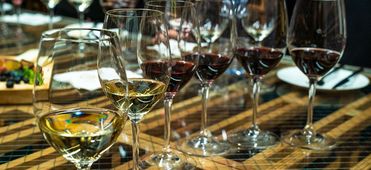 Flight of Wine Glasses in Tasting Room