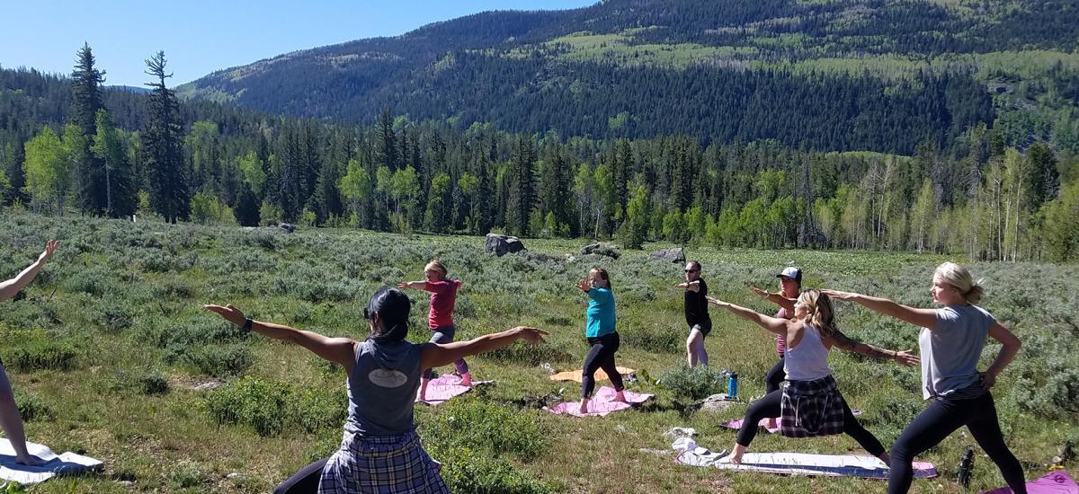 Enlighten Wellness Newsletter