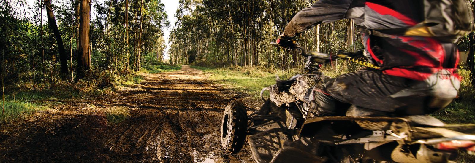Florida Tracks and Trails