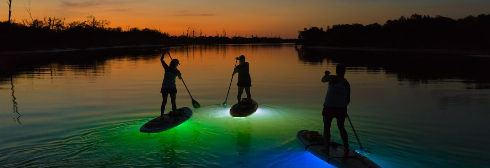 Lighted SUP