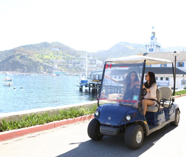 Catalina Island Golf Cart Rentals Tours