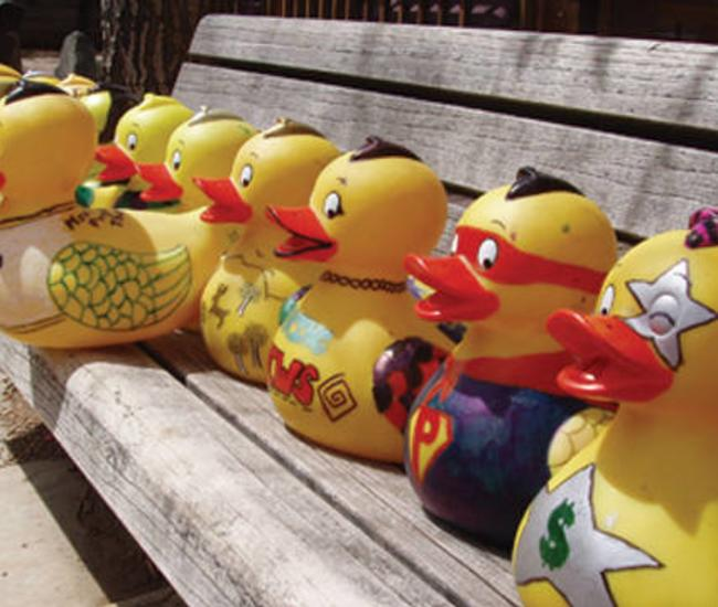 Duck Race Header