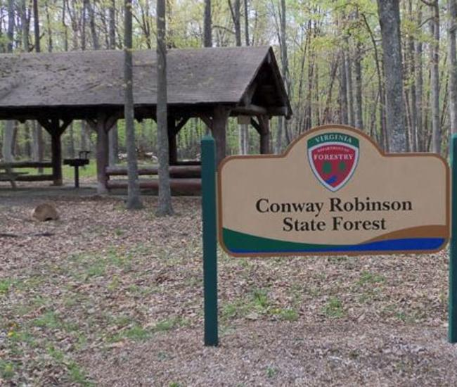 Conway Robinson State Forest picnic area