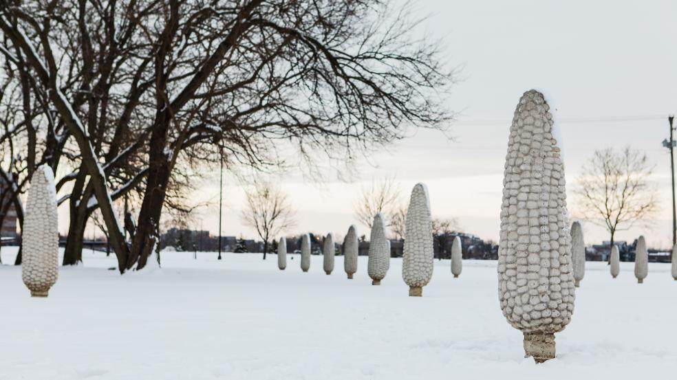 Field of Corn public art installation in the snow