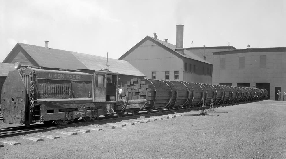 A narrow gauge Davenport engine