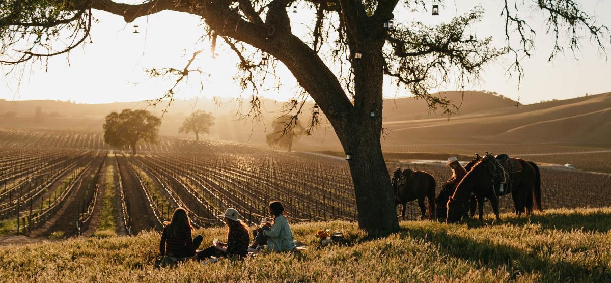 Girlfriends' Enjoy the Sunset After a Ride
