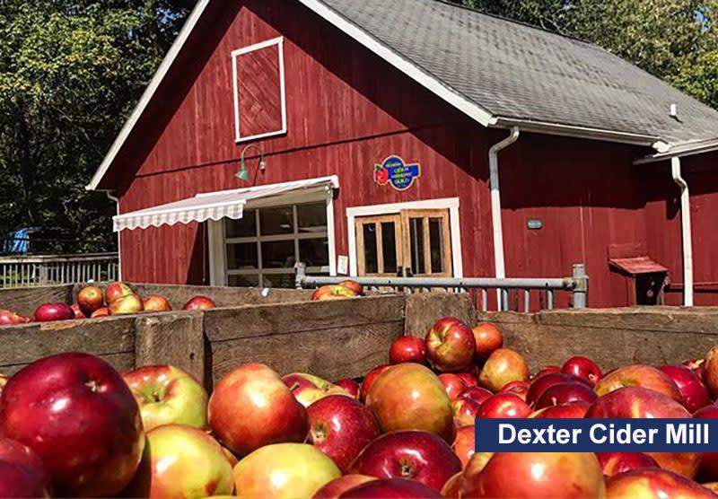 Dexter Cider Mill apples