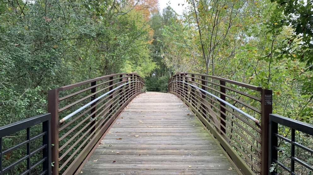 Veterans Park Bridge