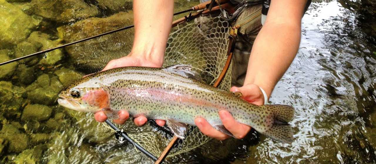 Fishing}