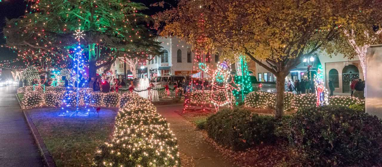 Downtown Forest City Christmas Lights}