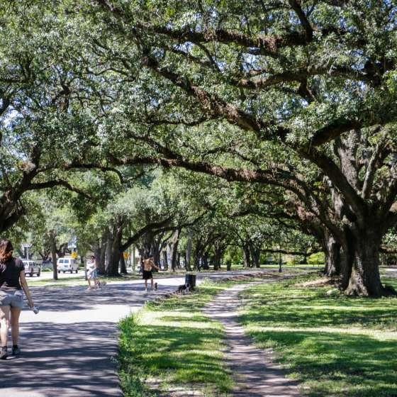 Audubon Park New Orleans