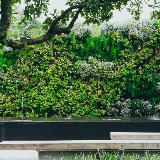 Jardín Botánico - New Orleans City Park