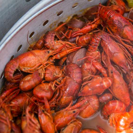 New Orleans Crawfish Boil