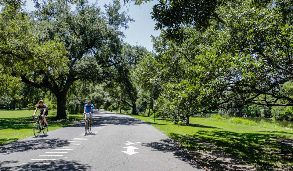 Biking in Audubon Park