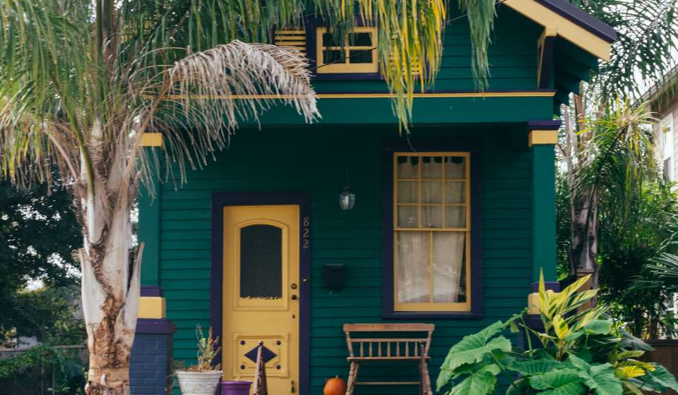 Lakeview Color - Purple, Green and Gold Mardi Gras color house