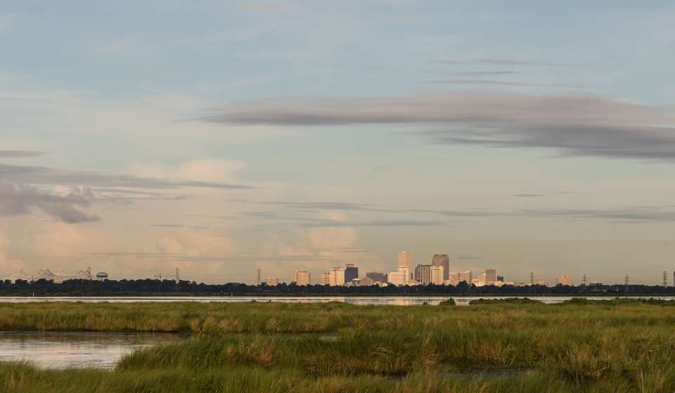 New Orleans Skyline and Swamps