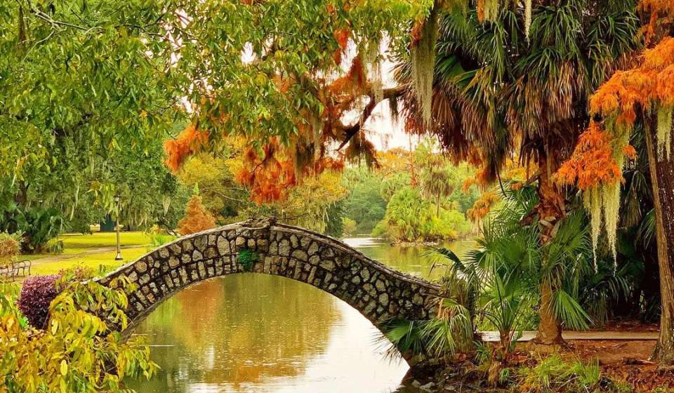 DavidNOLA - City Park