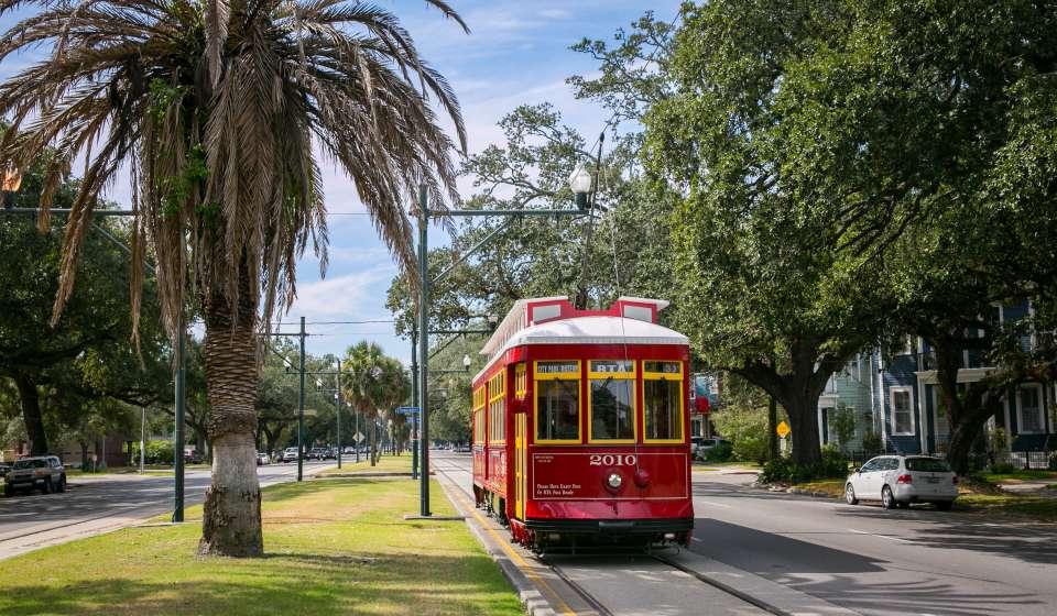 Carrollton Avenue Streetcar - Mid-City
