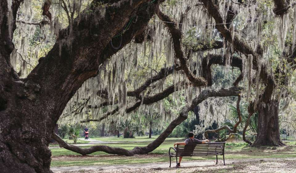 Top Picnic Spots In New Orleans