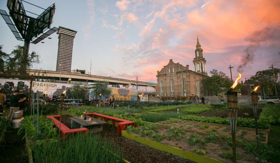 Paradigm Gardens