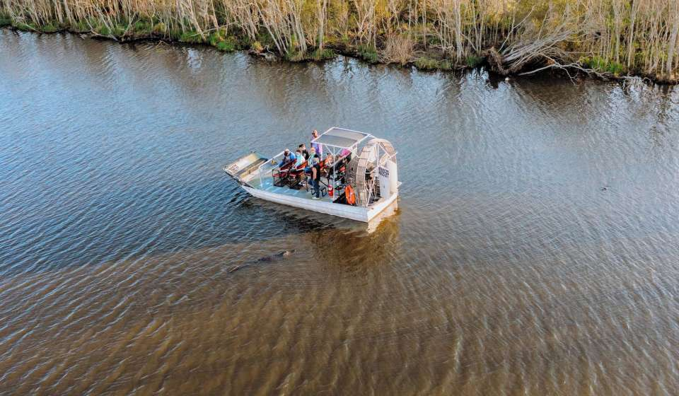 Louisiana Airboat Swamp Tour