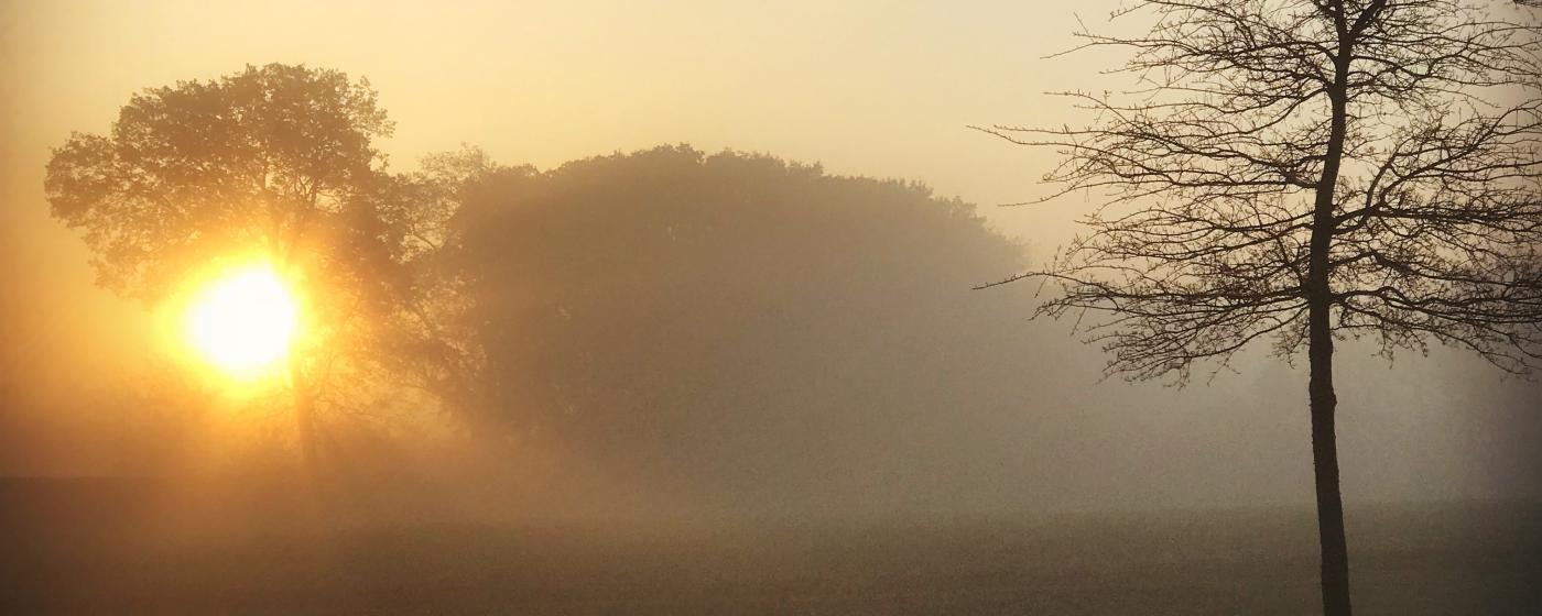 Spring Hill Sunrise