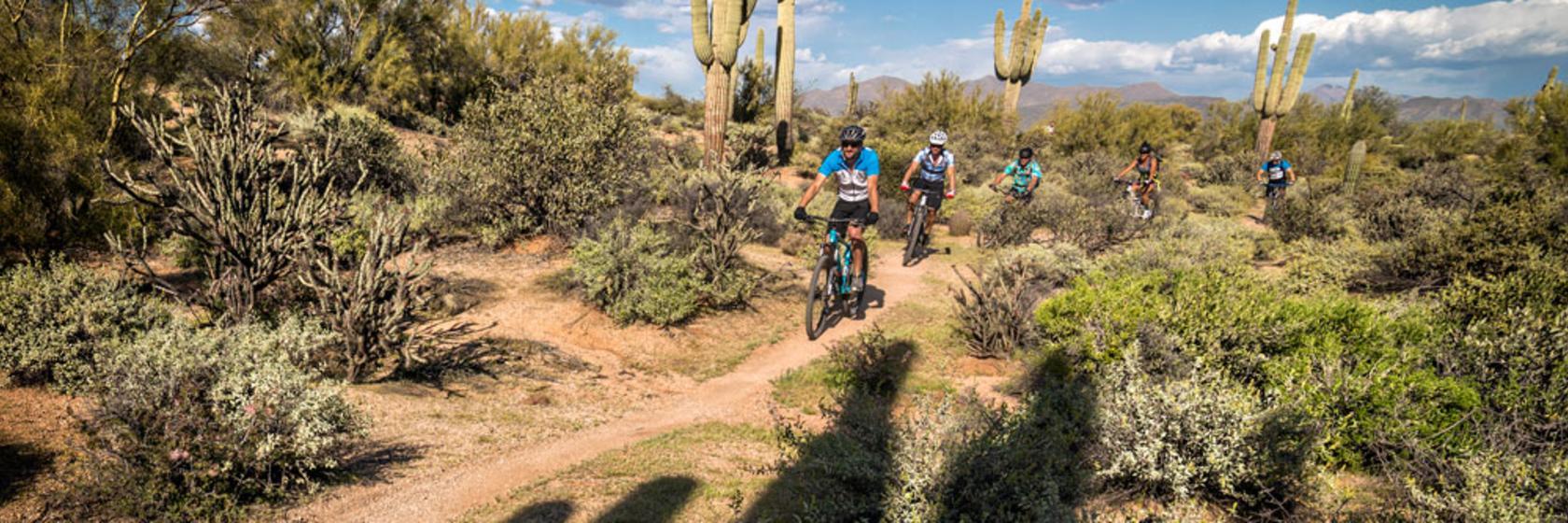 Mountain Bike Rentals Scottsdale