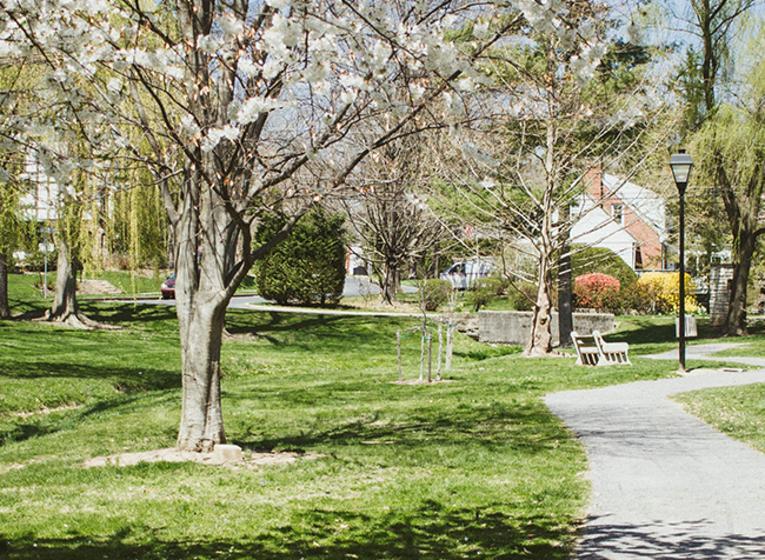 Camp Hill
