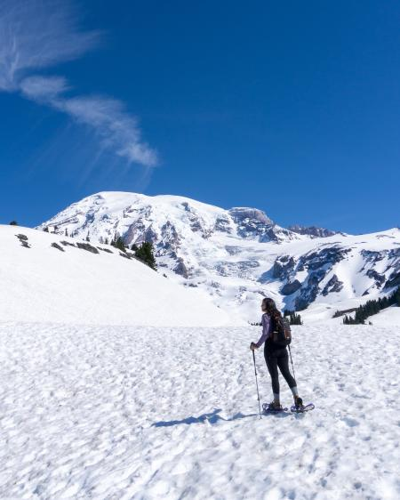 Paradise at Mount Rainier in early Summer