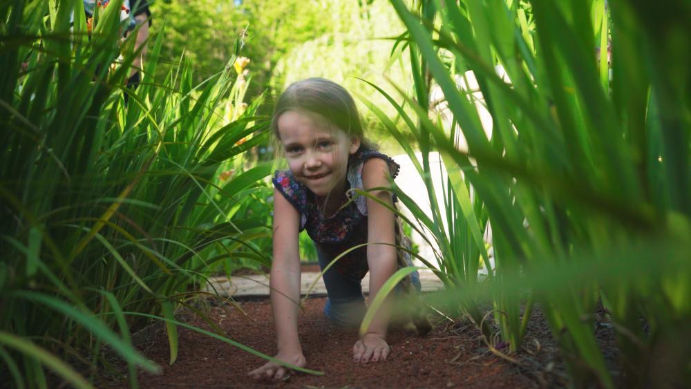 Crawling through State Botanical Garden