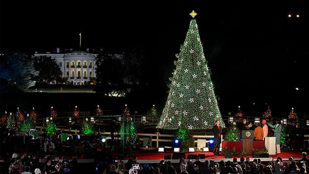 National Christmas Tree - DC Traditions