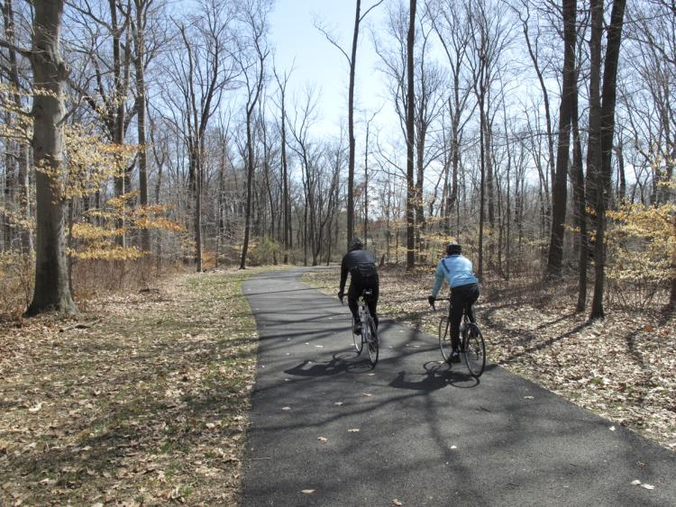 Lawrence Hopewell Trail in Lawrenceville, NJ
