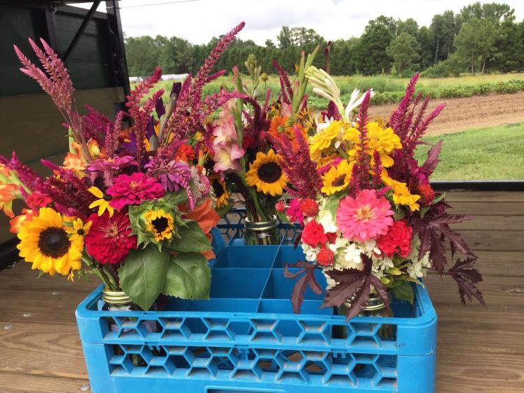 Blue Dragonfly Cut Flower Farm Bouquets