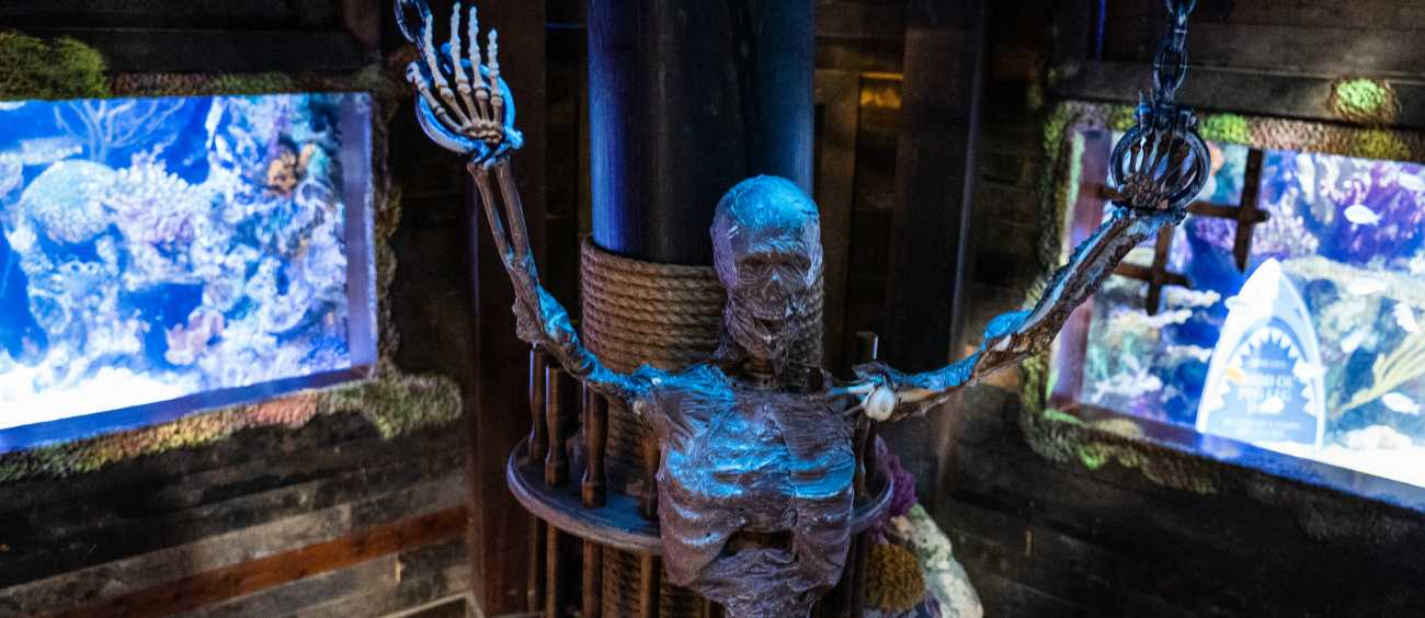 replica of a skeleton at a Halloween attraction