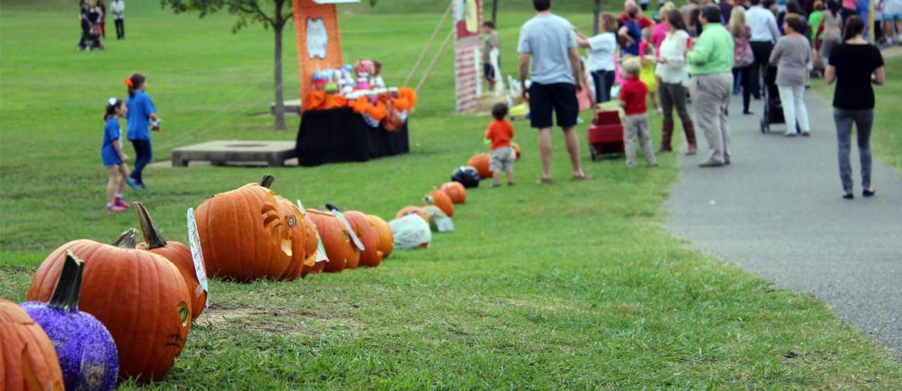 A photo of Pumpkin Shine on Line