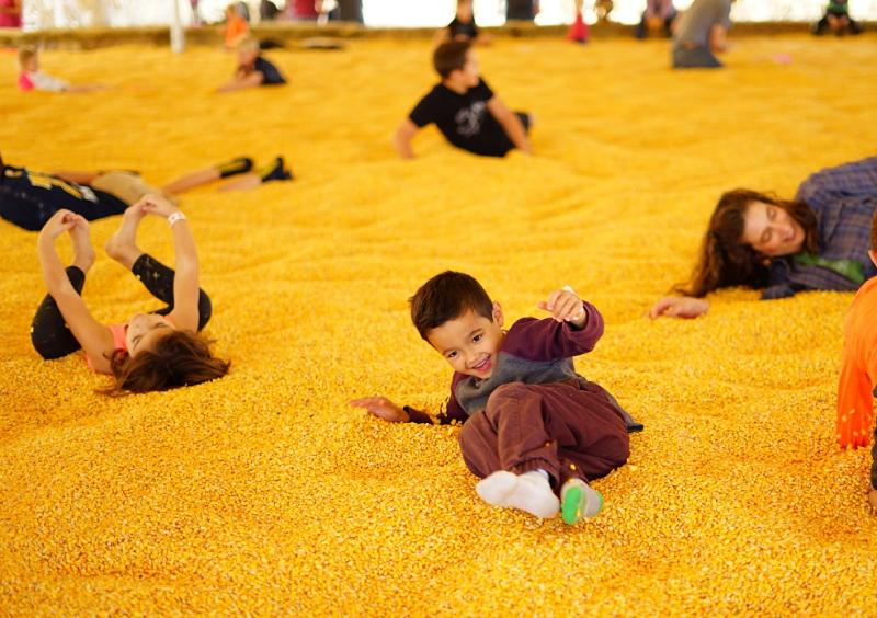 Children playing in a corn pit at the Twin Cities Harvest Festival & Maze in Brooklyn Park, MN