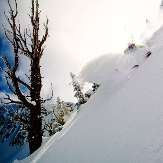 2011 Ski Salt Lake Shootout: 1st Place Portfolio