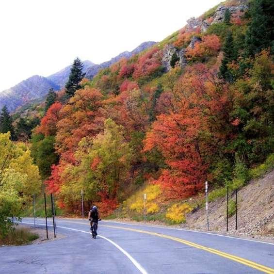 Millcreek Canyon Mountain Biking