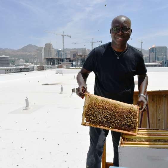 Adesina Daniel Oduntan - Bee-Craft Consult