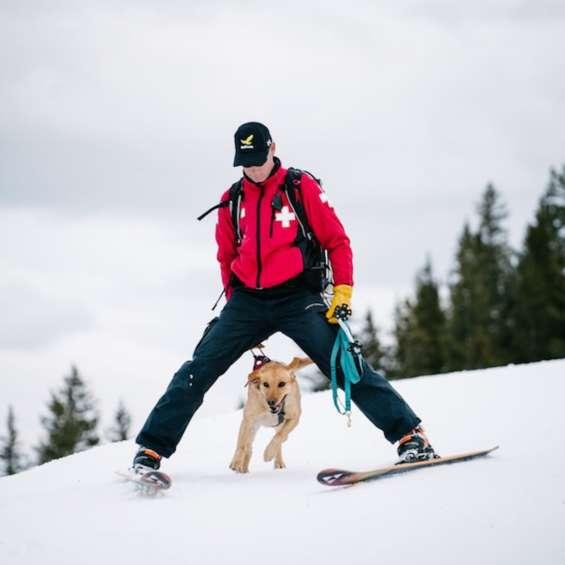 OG - Ski Patrol Dog