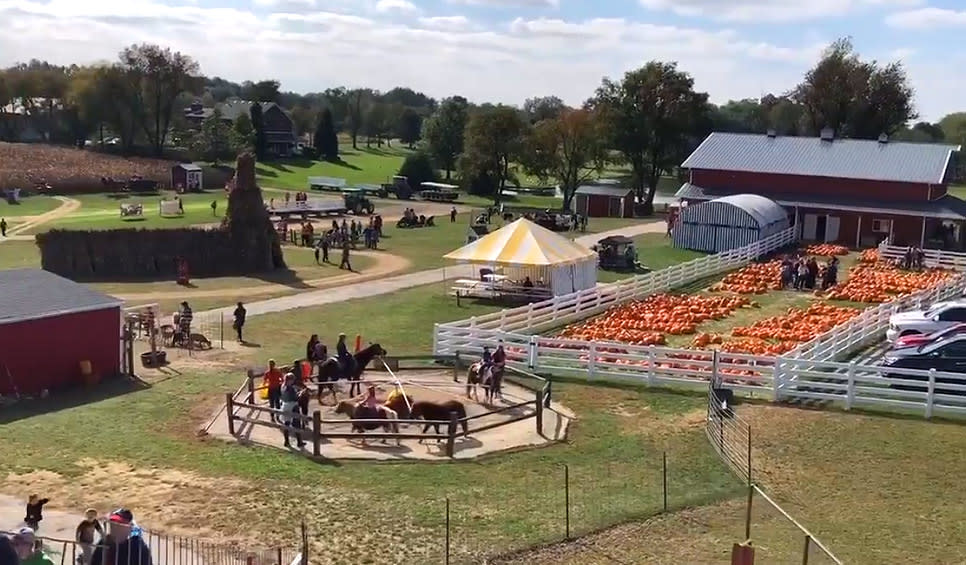 Kregel's Pumpkin Patch Lowell