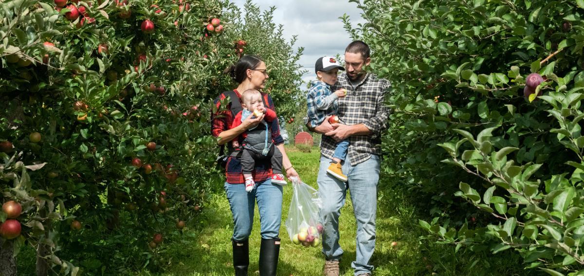 family-apple-picking