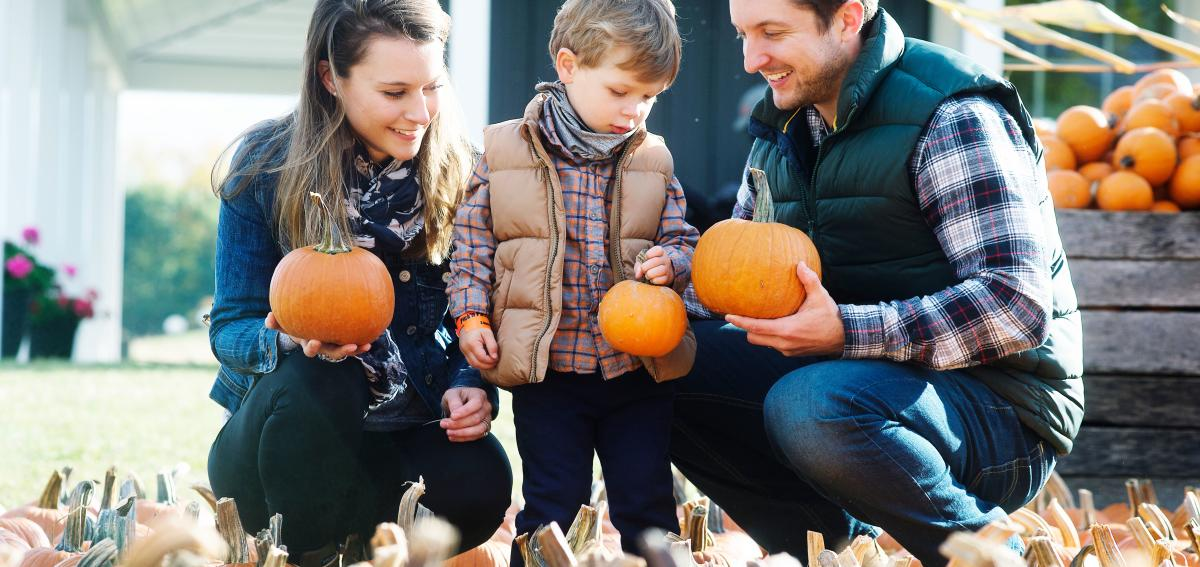A family selecting the perfect pumpkin at the Pick-n-Patch