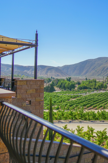 Top Things To Do in Temecula Valley