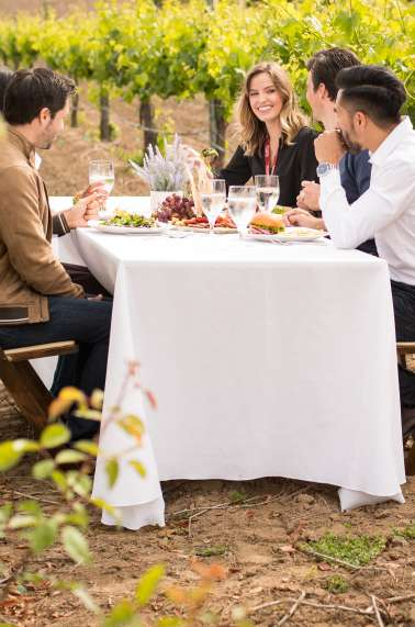 Group Dining in Vineyards