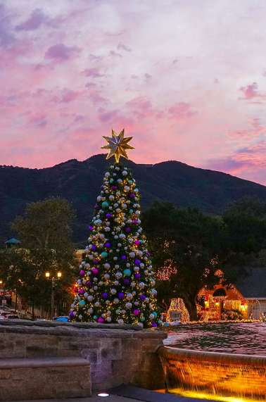 Temecula Chilled Christmas Tree